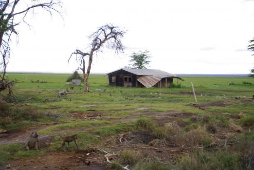 Amboseli 21