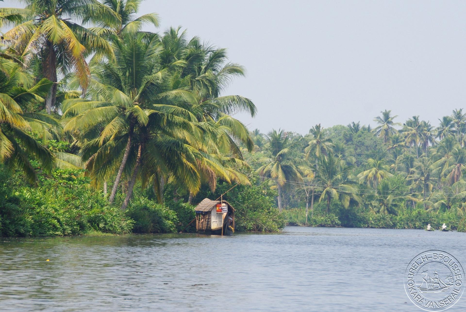 Backwaters 4