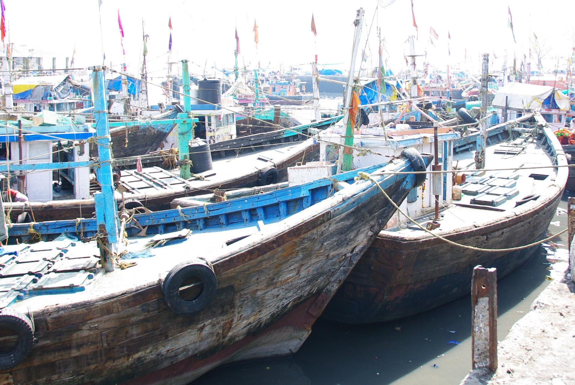 Bombay 11