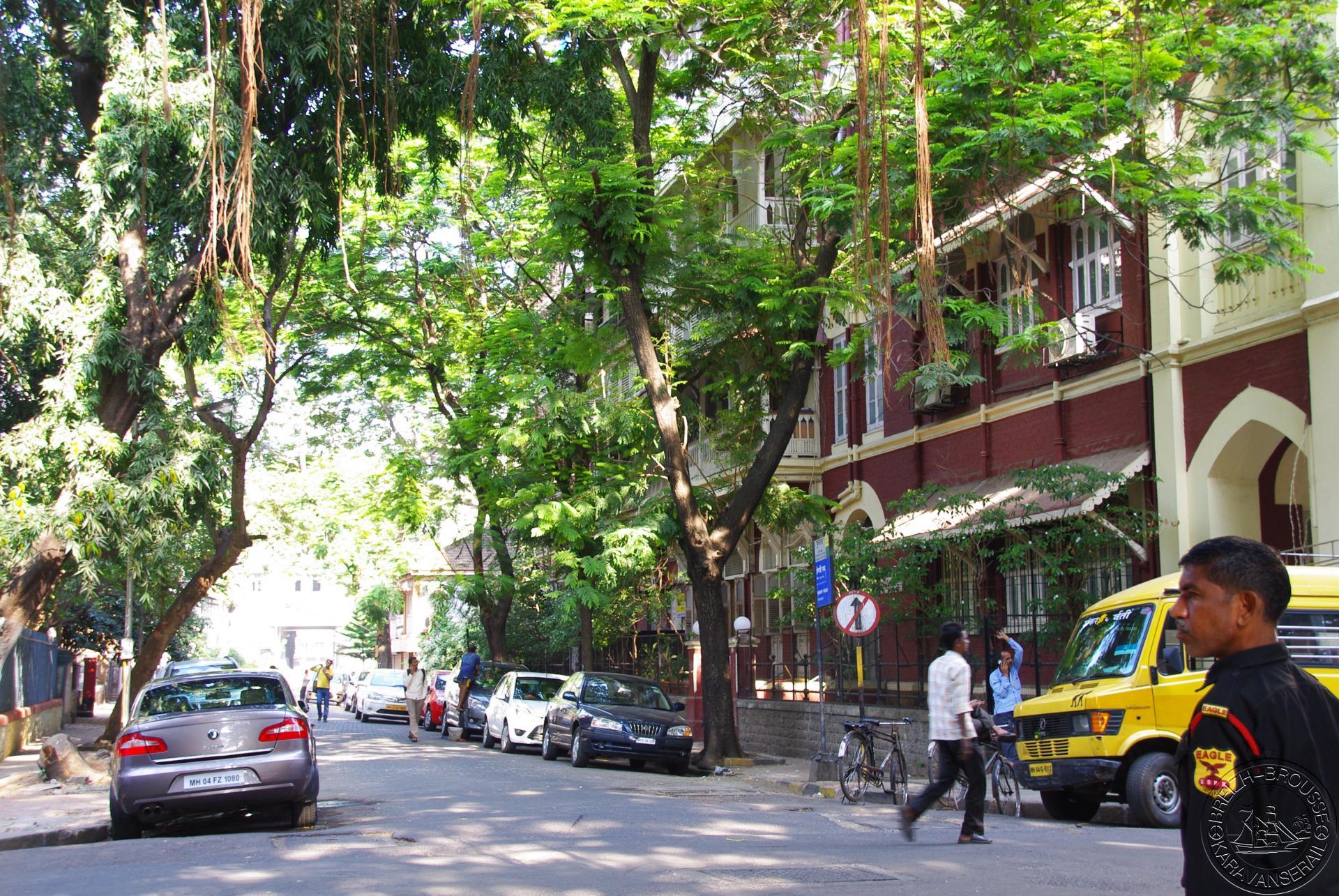 Bombay 4