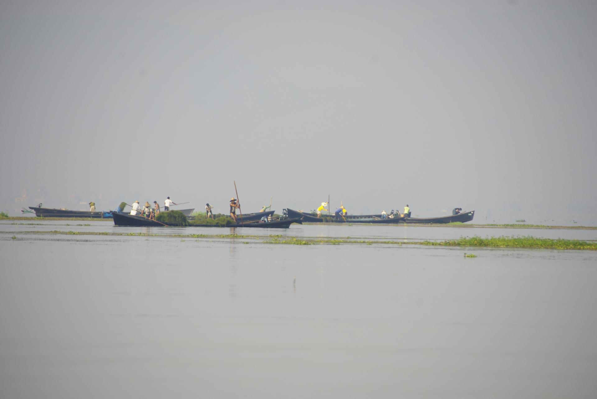 Inle 5