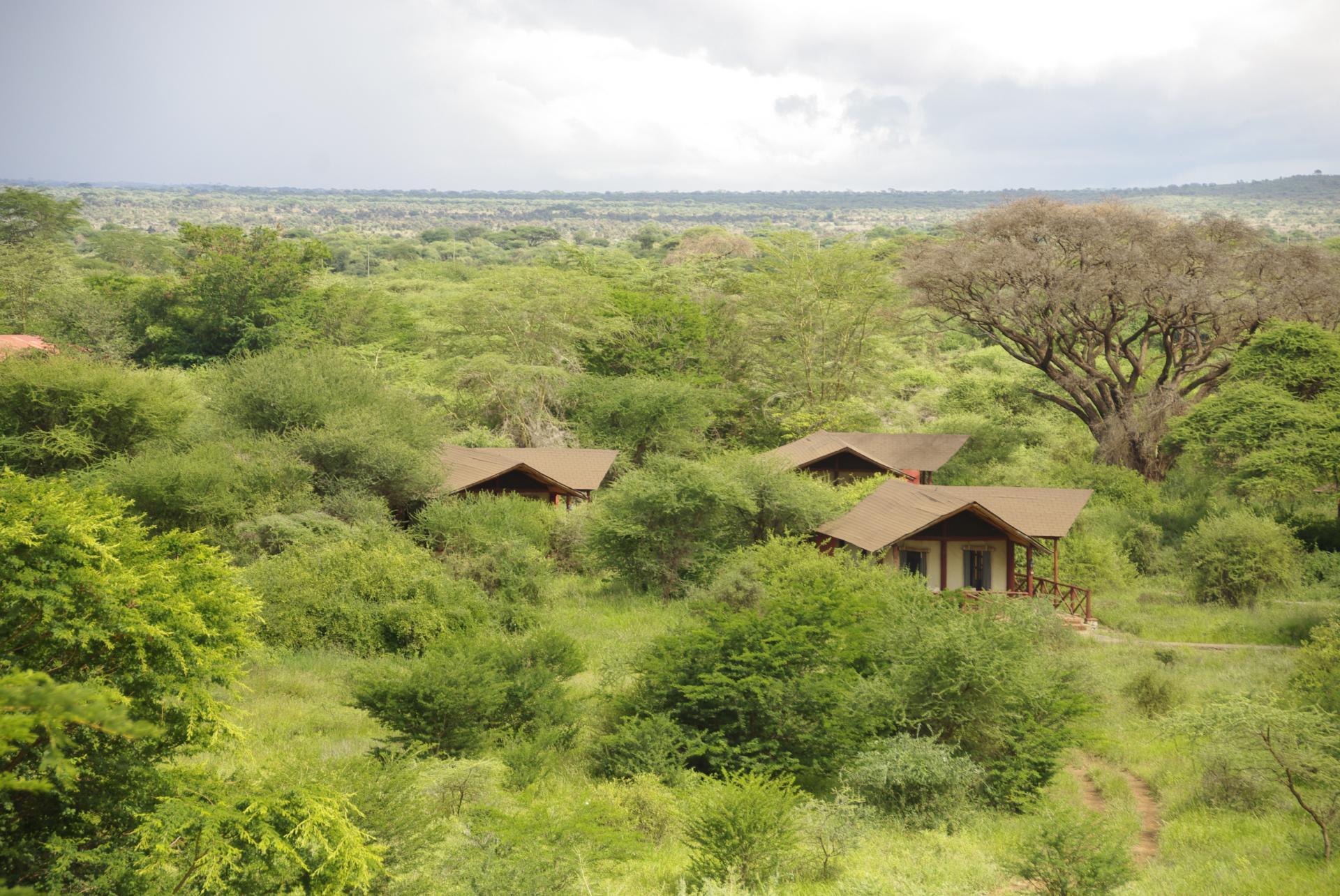 Kilima safari camp 1