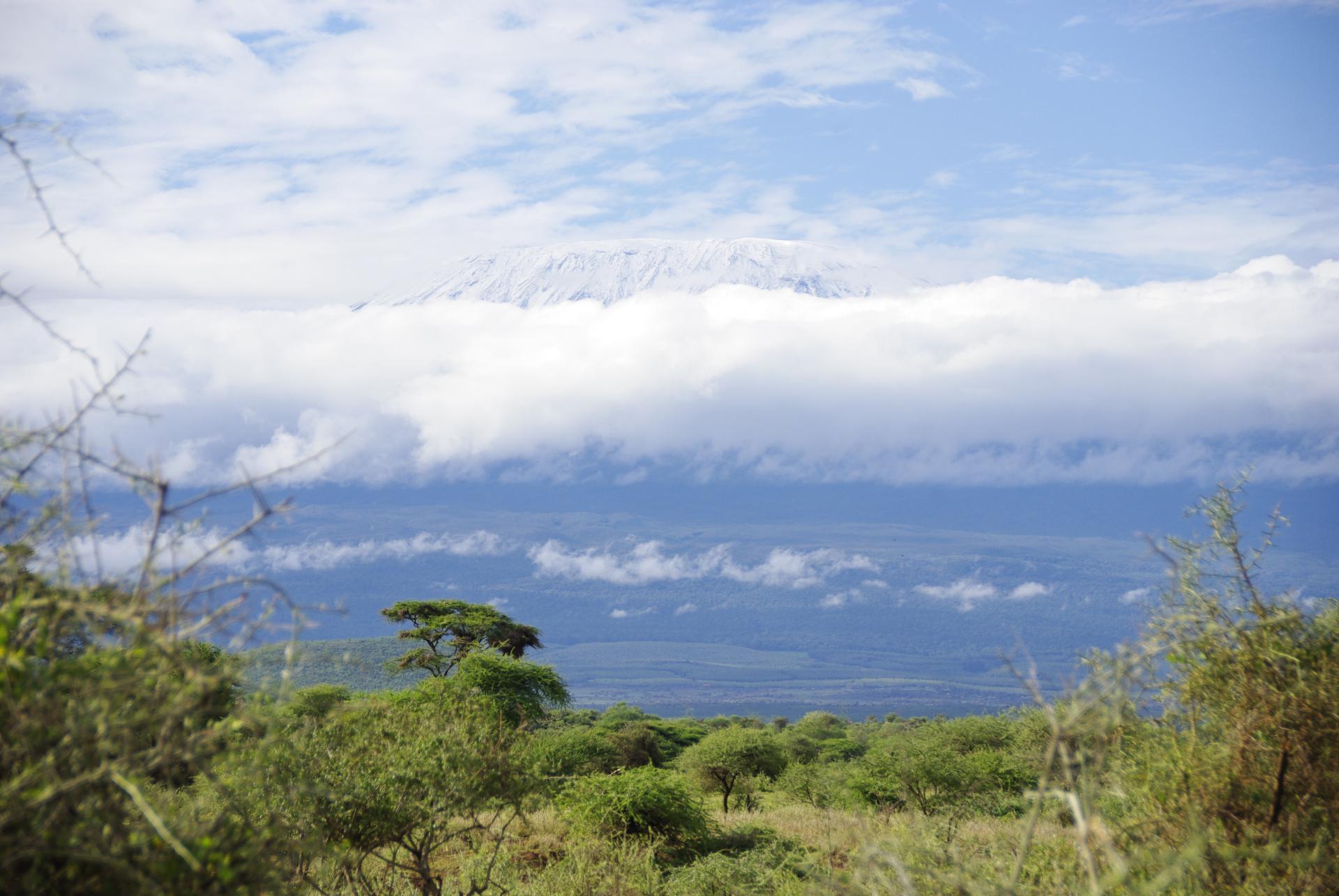 Kilimandjaro 2