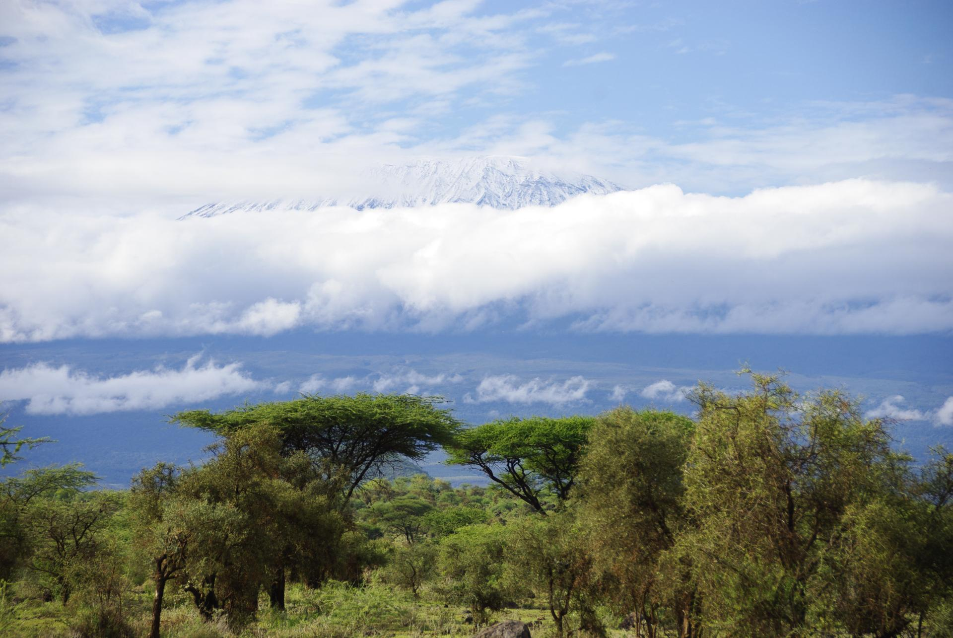 Kilimandjaro 3