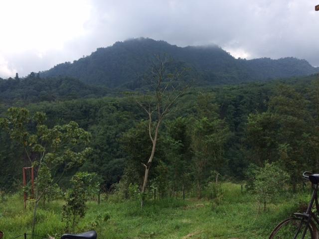 Merapi 2