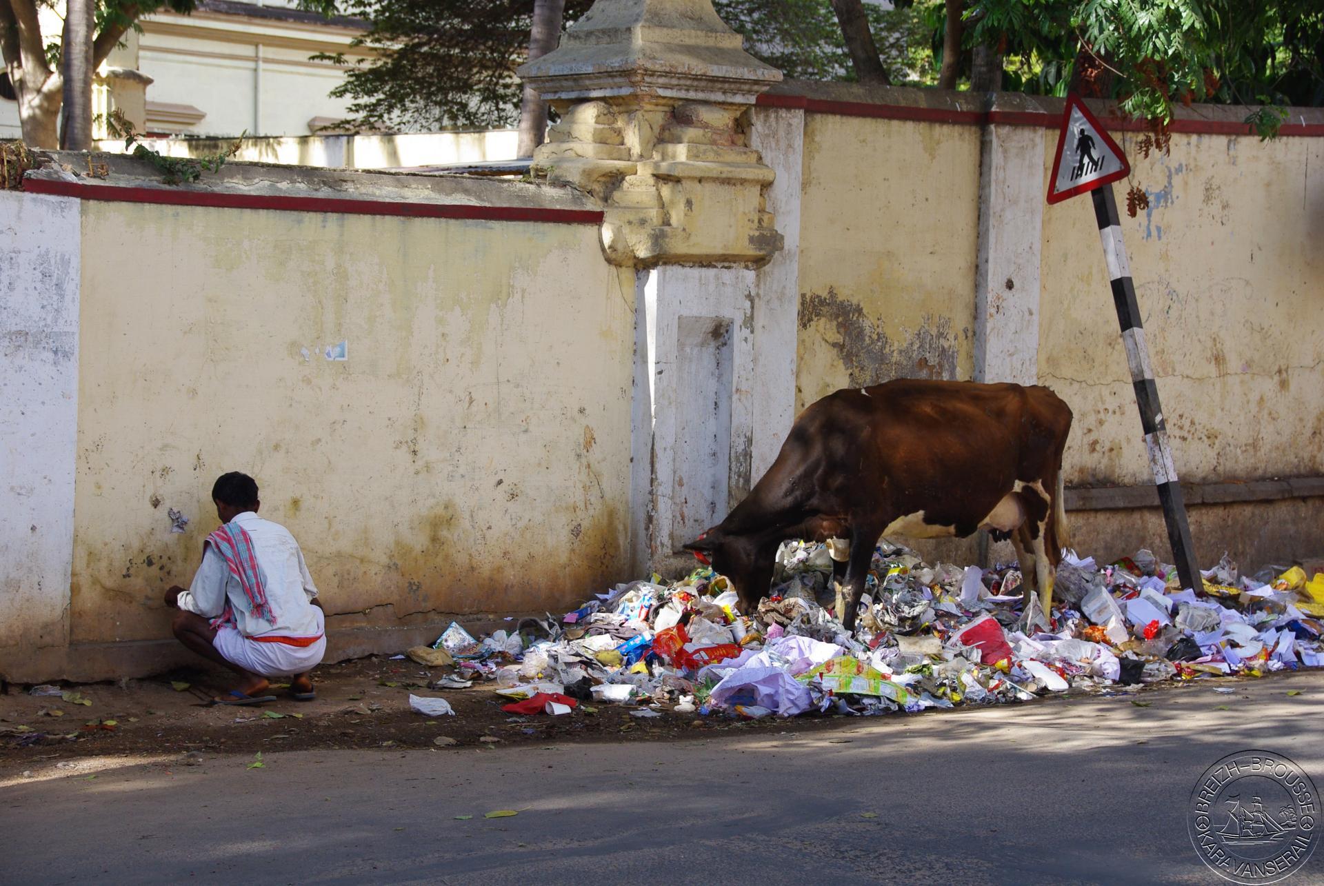 Mysore 5