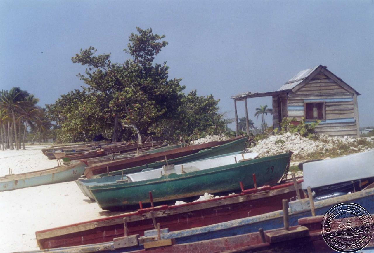 playa-giron-5-1.jpg