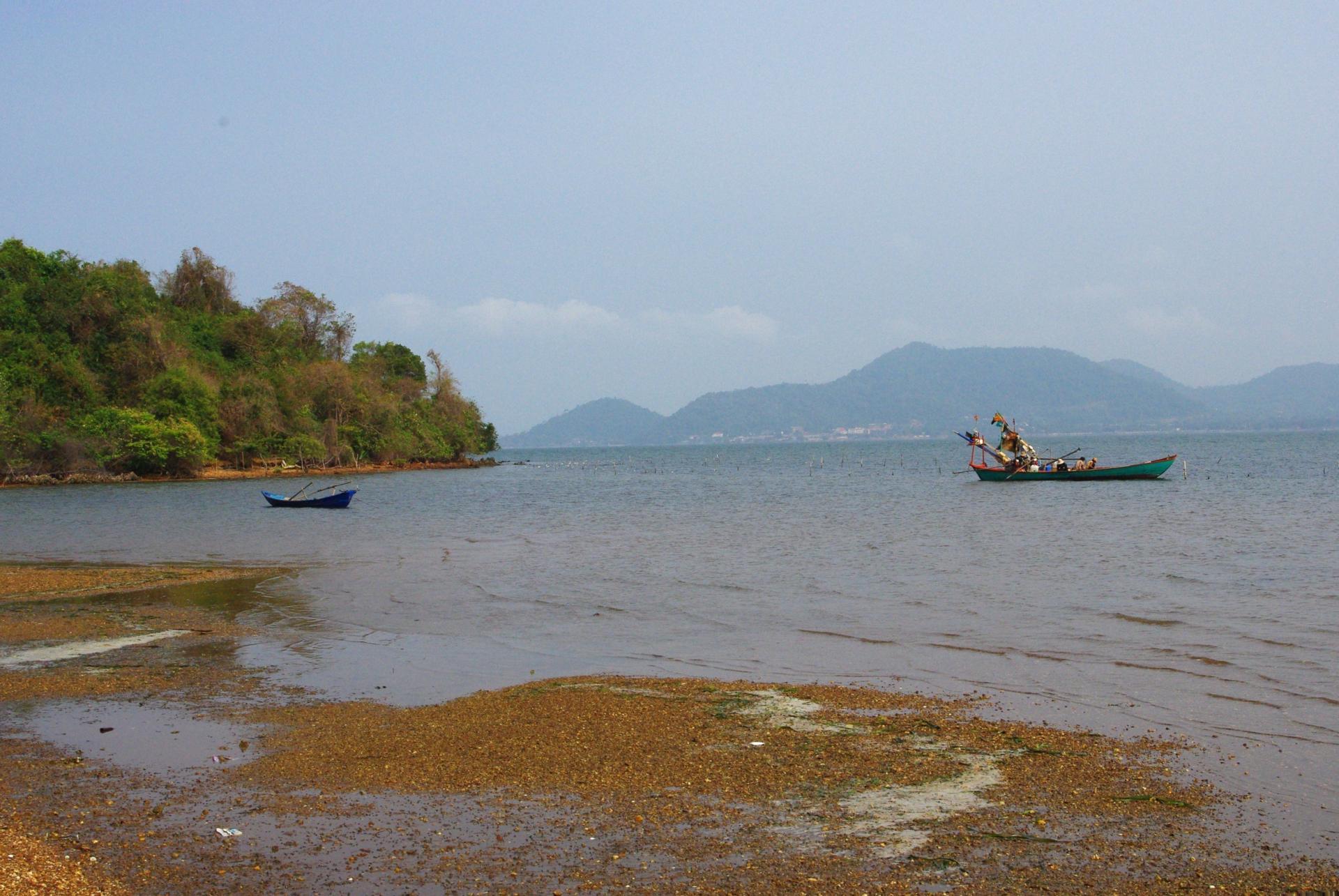 Rabitt island 14